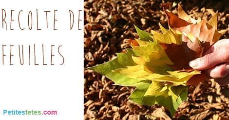 bricolage feuilles automne2
