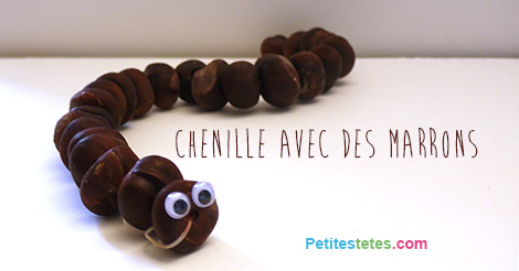 chenille-marrons