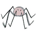 une araignee sur le plancher