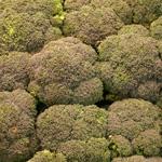 recette flan brocoli