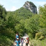 Randonnée - Foret de Saoû - Drôme