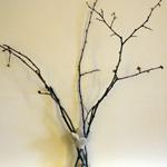 composer l'arbre à voeux avec des branches