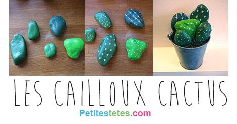 cailloux cactusFB