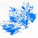 bricolage feuille peinture