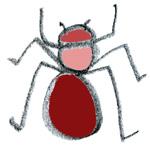 une fourmi