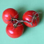 soupe froide tomate concombre