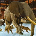 sortie parent enfant grande galerie evolution